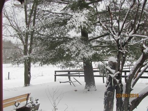 Snow Farm FrtYd March 4 2015 - Copy