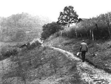 miner walking work hillside