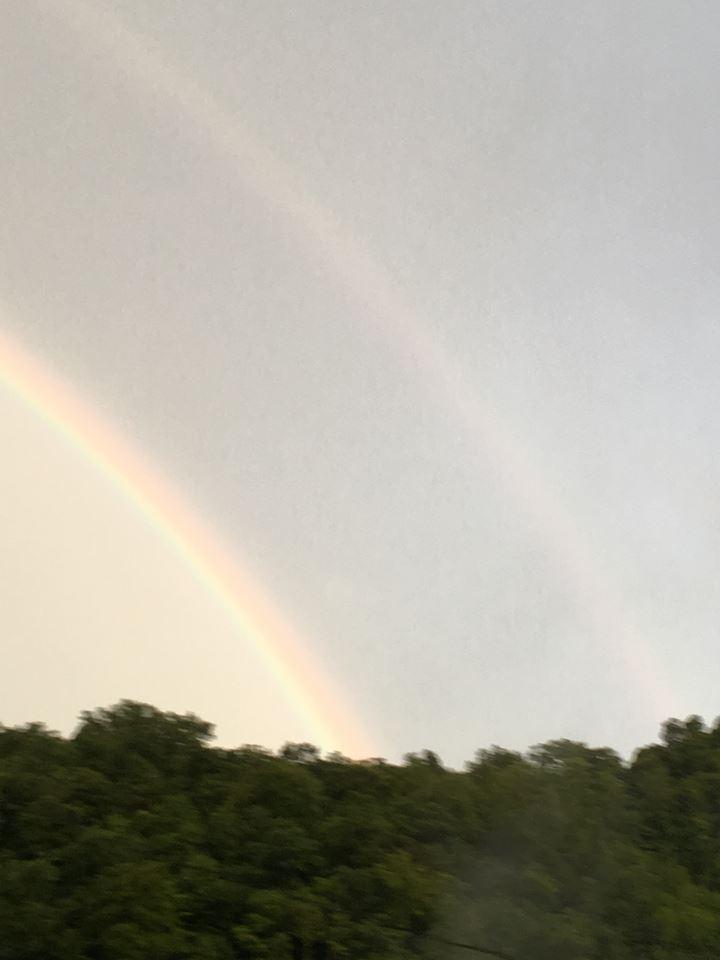 Rainbow Double 2017